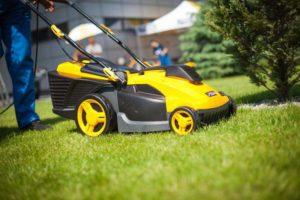 Критерии подбора газонокосилки для участка