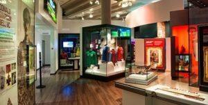 Критерии выбора музейных витрин